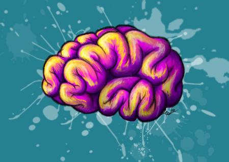Fuente: http://losdibujosdemeli.blogspot.com.es/2014/04/cerebro-todo-color.html